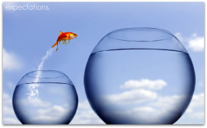 Goldfish Jump Out Of Bowl 2 - expectations