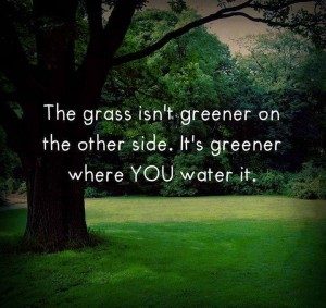 grass-greener-where-you-water-it-life-quotes-sayings-pictures